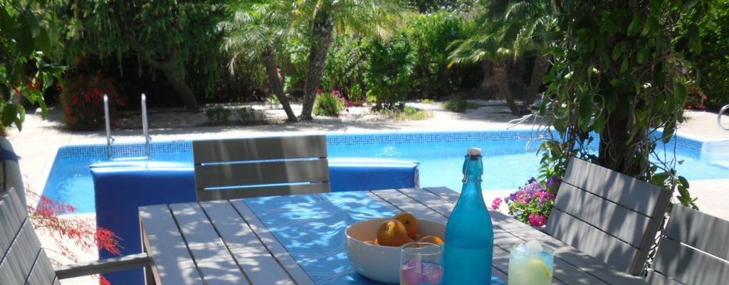 Private pool and gardens at Ampeli Villa