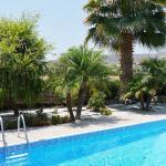 Garden behind the pool