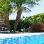 Gardens around the pool