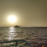 Sunset Turtle Cruise on Atlantis