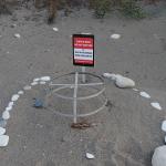 Turtle nest on Pissouri beach