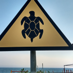 Turtle sign at Avdimou beach